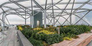 Сад на крыше из фторполимера ETFE в Лондоне